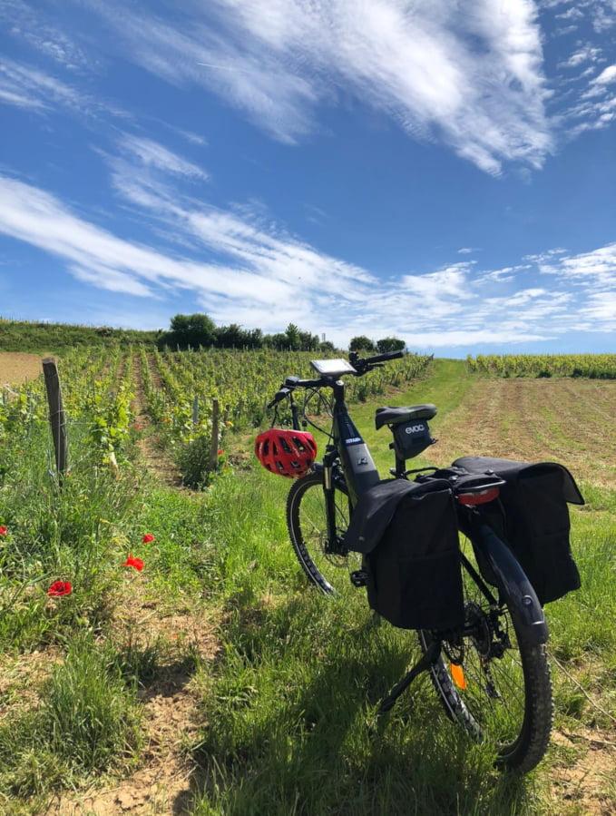 Vélo à assistance électrique dans les vignes